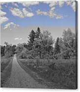 Follow The Road Canvas Print