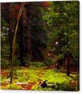 Follow The Trail Canvas Print