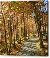 Follow The Yellow Brick Rd Canvas Print
