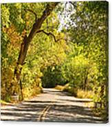 Follow The Yellow Lines Canvas Print