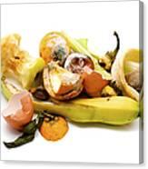 Food Waste Canvas Print