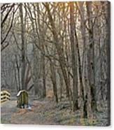 Foot Bridge In Fort Harrison State Park Canvas Print