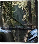 Footbridge Near Sol Duc Falls, Olympic Canvas Print