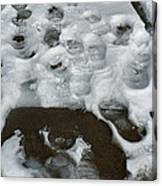 Footprintscomp 2009 Canvas Print