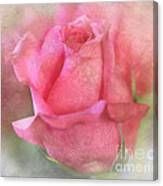 For The Love Of Pink Canvas Print