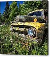 Fords View Canvas Print