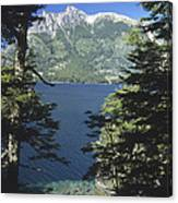 Forest And Lakes Lanin National Park Canvas Print