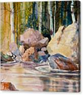Forest And River Canvas Print