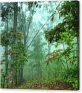 Forest Deep - Forest Green Canvas Print