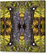 Forest Disaster C Canvas Print