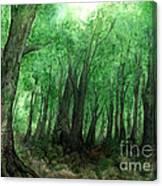 Forest Entrance Canvas Print