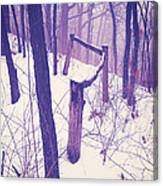 Forest Fence Canvas Print