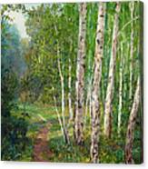 Russian Forest Footpath Canvas Print