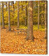 Forest Gold Canvas Print