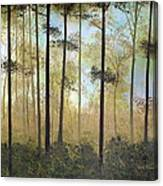 Forest Harmony Canvas Print