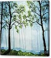 Forest Haze Canvas Print