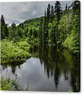 Forest Lake - Quebec - Canada Canvas Print