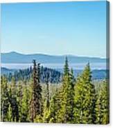 Forest Landscape Canvas Print