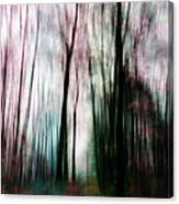 Forest Of Imagination Canvas Print