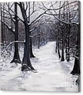 Forest Path In Winter Canvas Print
