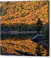Forest Reflection Canvas Print