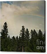 Forest Under The Rainbow Canvas Print