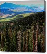 Forested Volcanic Slopes Canvas Print