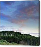 Forests Canvas Print