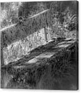 Forgotten Bench Canvas Print