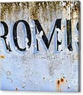 Forgotten Promise Canvas Print