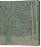 Forked Tree Canvas Print