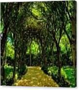 Forrest Etching Canvas Print