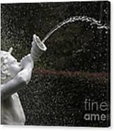 Forsyth Fountain Closeup Canvas Print