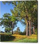 Fort Donelson Canvas Print