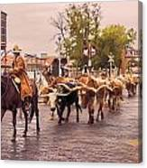 Fort Worth Cattle Drive Canvas Print