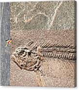 Fossil Fishing Canvas Print