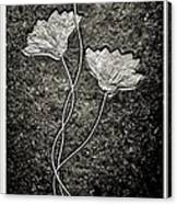Fossilized Flowers Canvas Print