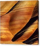 Fossilscape Canvas Print