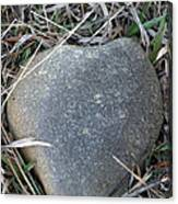 Found A Heart Of Stone Canvas Print