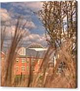 Founders Hall Through The Grasses Canvas Print
