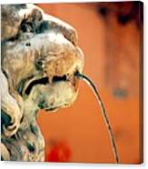 Fountain Lion Canvas Print