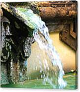 Fountain Of Youth Canvas Print