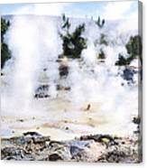 Fountain Paint Pot Yellowstone Np Canvas Print