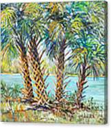 Four Palms Canvas Print