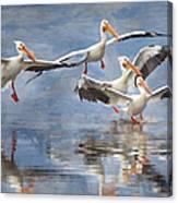 Four Pelican Landing Watercolor Effect Canvas Print