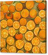 Four Persimmons Canvas Print