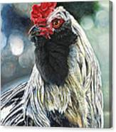 Fowl Martyr Canvas Print