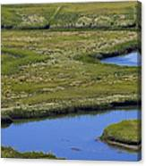 Fox Creek Marsh Canvas Print