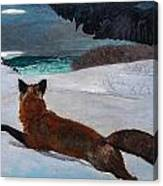 Fox Hunt 1893 Canvas Print