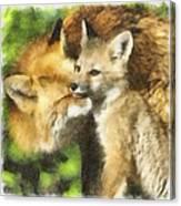 Fox One Canvas Print